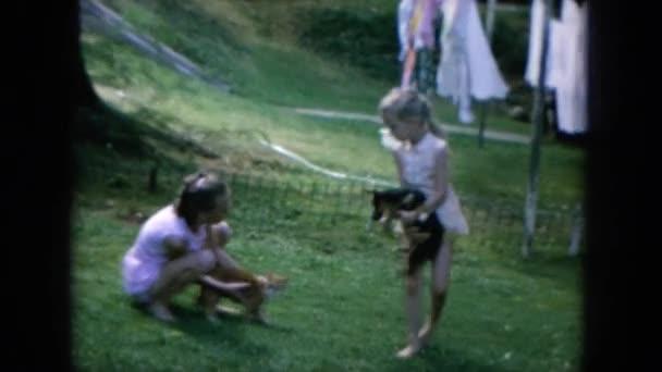 holky hrají s pes a kočka