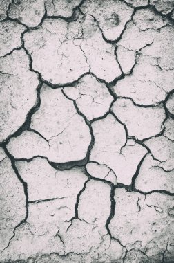 dried soil with multiple cracks, black and white toning