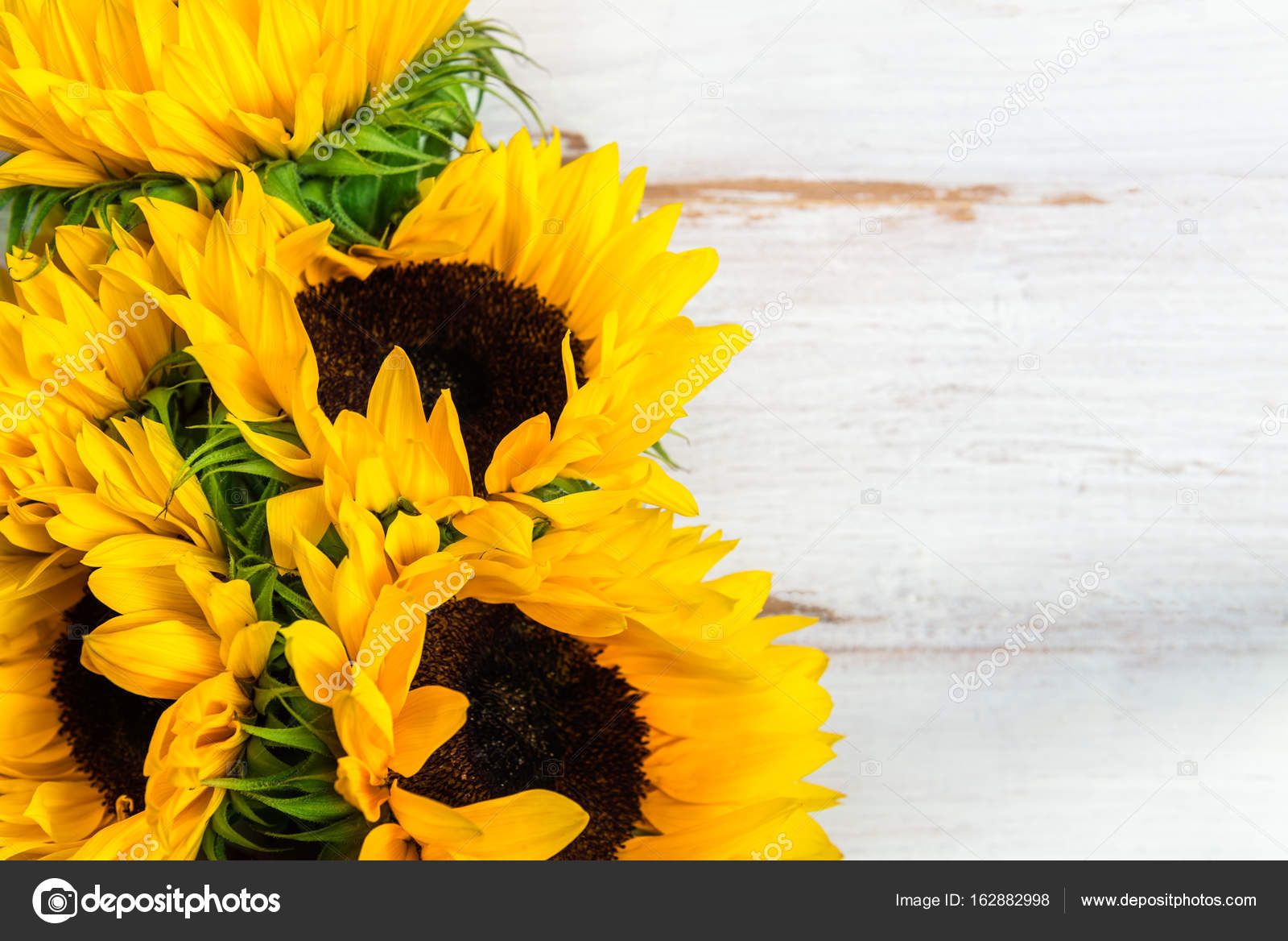 Yellow Sunflower Bouquet On White Rustic Background Stock Photo