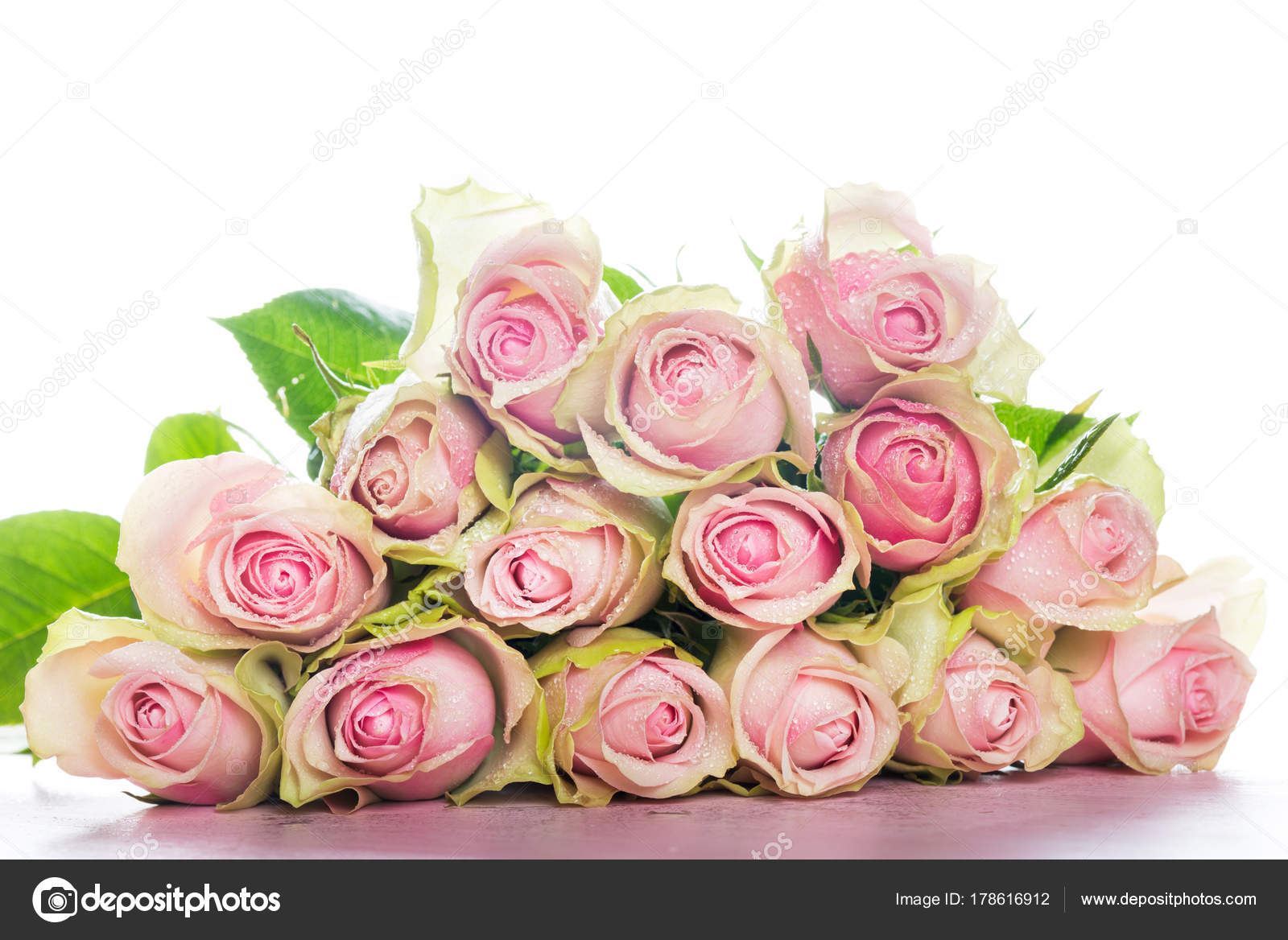 Beautiful Bunch Of Two Colored Roses Stock Photo Manuta 178616912