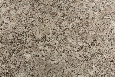 Beige and brown granite background.