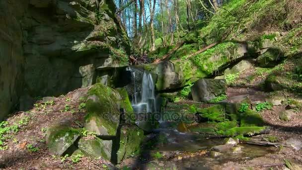 časová prodleva vodopádu v Les, lesní vodopádu v Creek, Moss na The Rocks lesní Stream časová prodleva, proud sladké vody s vodopádem v horském lese