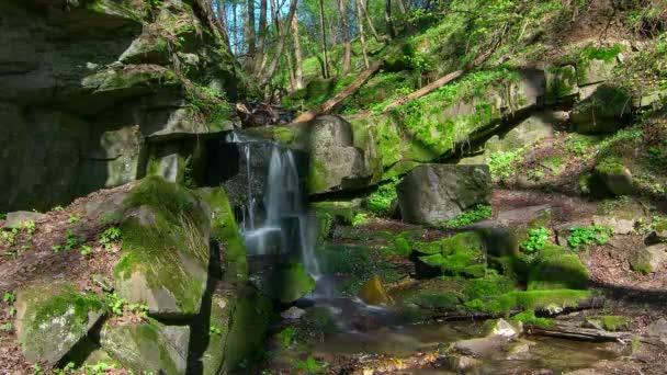 časová prodleva vodopádu v Les, lesní vodopádu v Creek, Moss na skalách lesní Stream 4k časová prodleva, proud sladké vody s vodopádem v horském lese