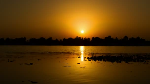 sunrise on the lake, sunrise over river, motorboat at sunrise, morning Landscape, timelapse of sunrise at the river with water lily, timelapse of sunrise over lake