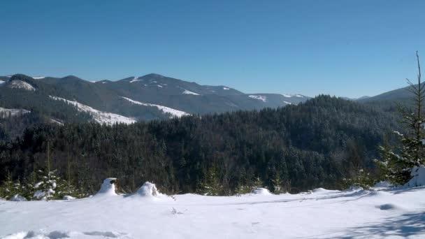majestátní sněhové hory, letecký výhled na zimu Karpaty, jehličnatý les v zimních horách