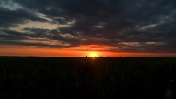 dawn in the steppe time lapse, sunrise in prairie, sunrise over field timelapse, morning sun over the field