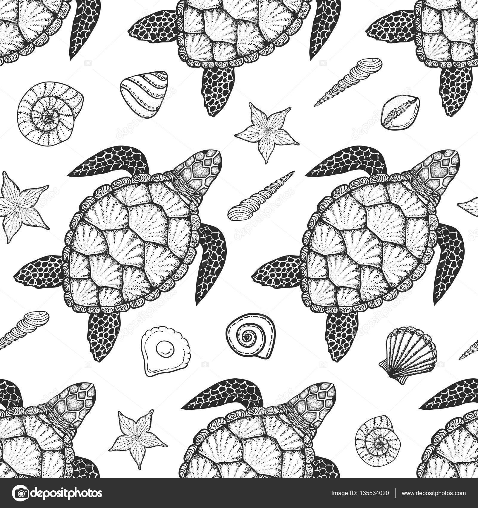 Patrón sin fisuras con tortugas marinas y las cáscaras en el estilo ...