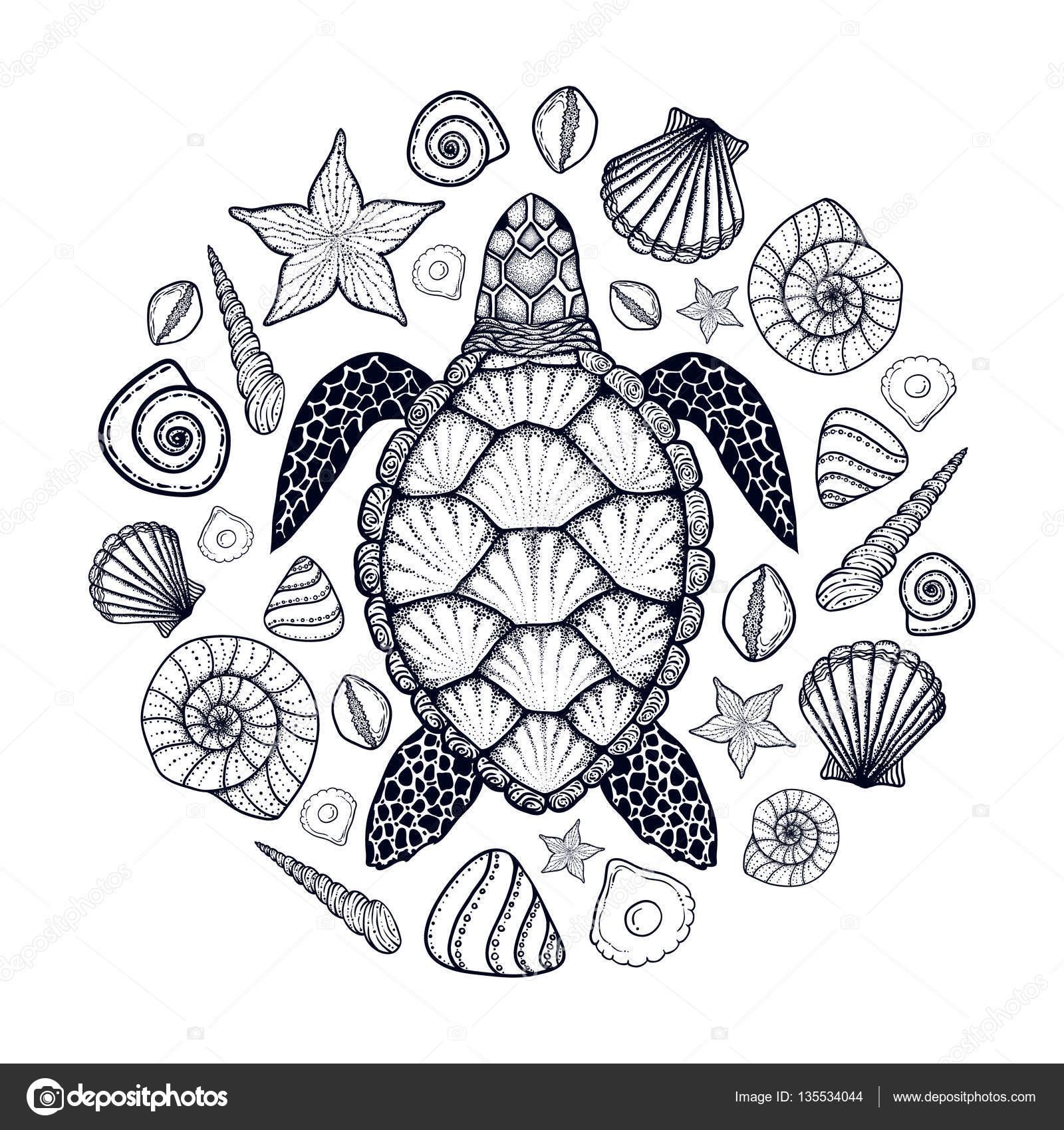 Tortugas marinas y las cáscaras en el estilo de arte de línea ...