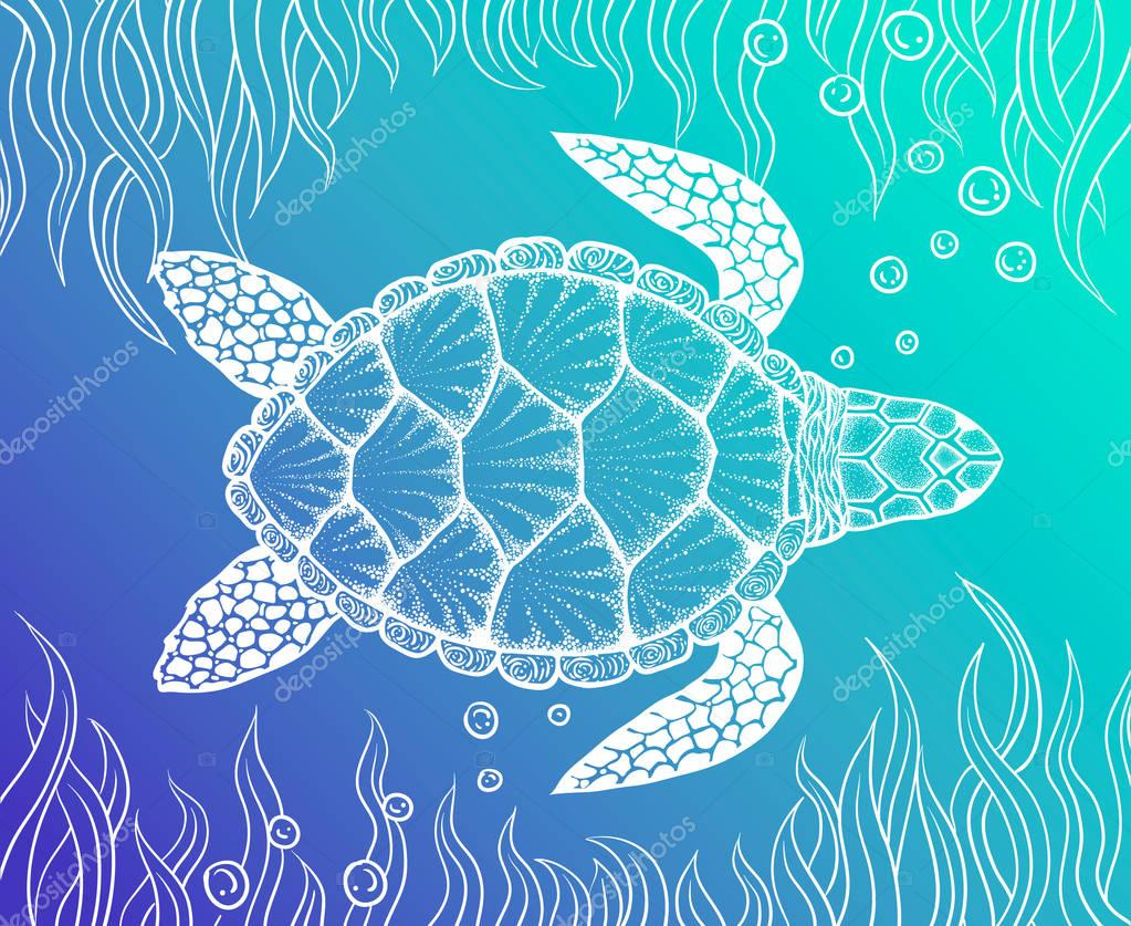Sea turtle in line art style. Hand drawn vector illustration. Design for coloring book. Set of ocean elements