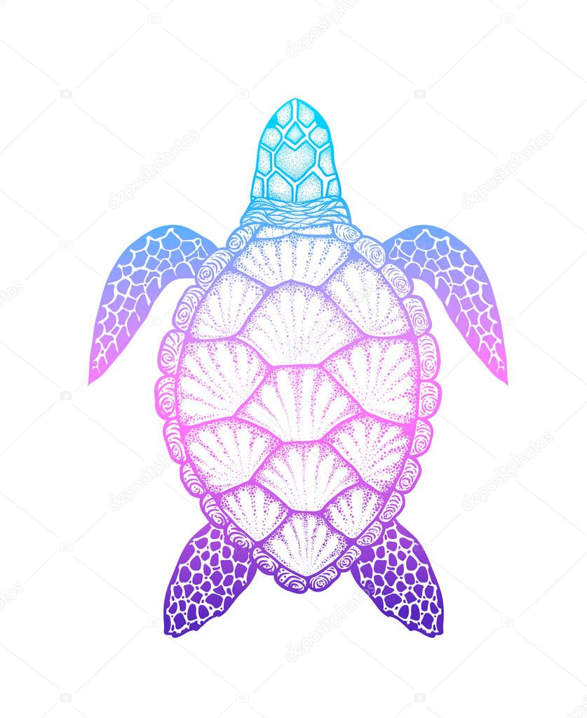 Sea turtle in line art style. Hand drawn vector illustration isolated on white background. Design for coloring book