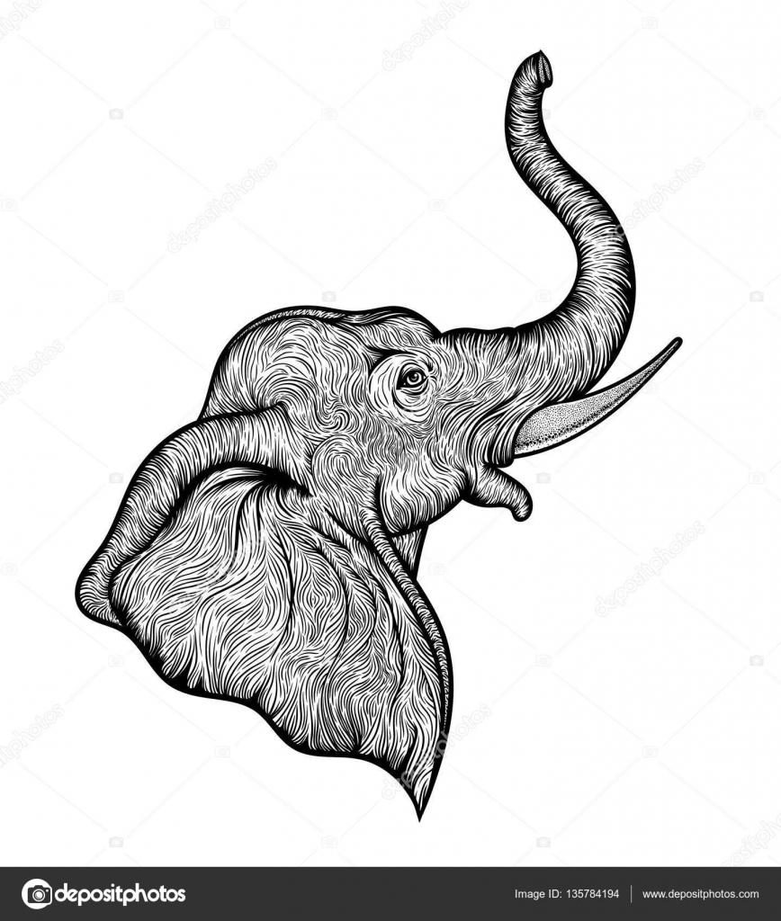 T te d l phant dans la conception de profil ligne art boho illustration de dieu indien ganesha - Tete d elephant mural ...