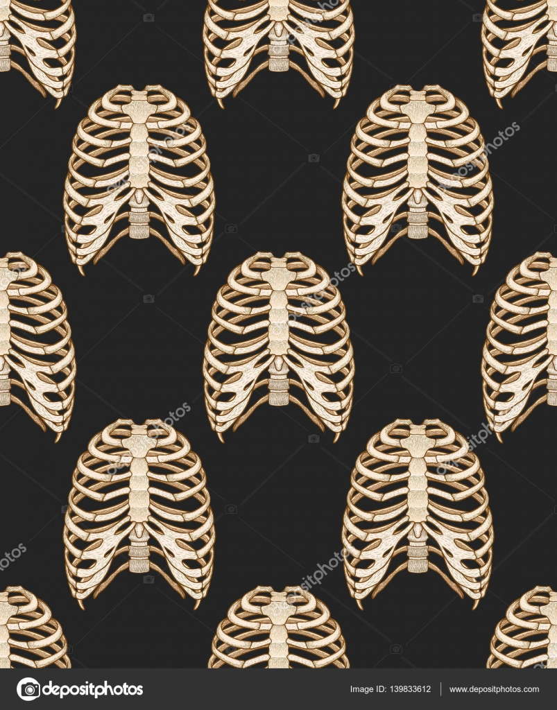 Seamless Pattern With Human Rib Cage Line Art Style Boho Vector