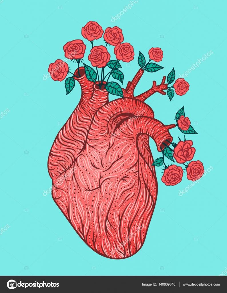 Coeur Humain Avec Des Fleurs Illustration Vectorielle Style De