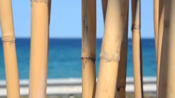 Bambusz pálcákat, játszik a szél