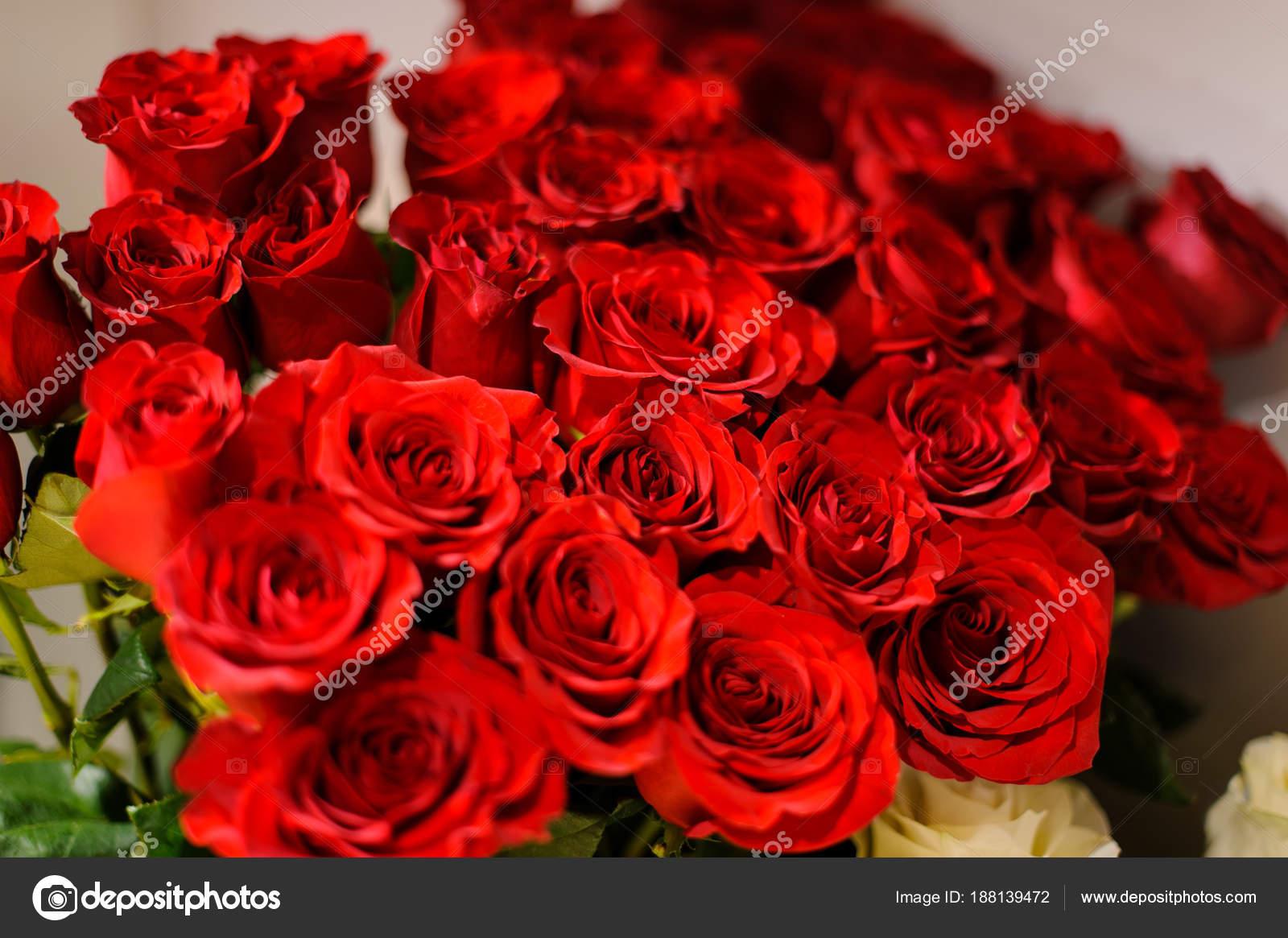 Fotos ramos de rosas rojas grandes cerrar foto de - Ramos de flores grandes ...
