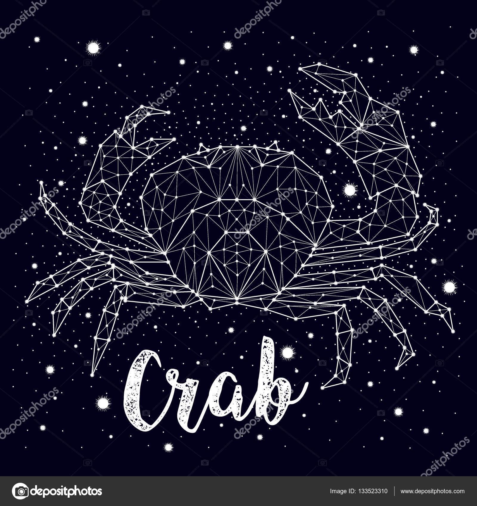 Vector de constelación del cangrejo — Archivo Imágenes Vectoriales ...