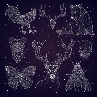 constellation. bear, panda, deer, skull, butterfly, fly, rooster
