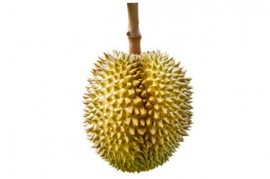 Durian on white background.