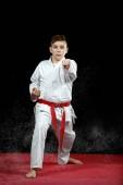 jeden chlapeček v bílém kimonu během cvičení karate kata