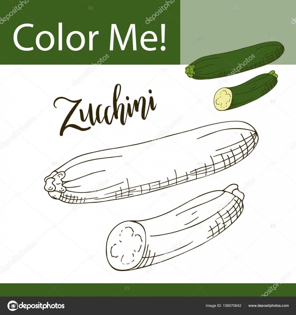 Onderwijs Kleurplaat Met Groente Hand Getekend Vectorillustratie