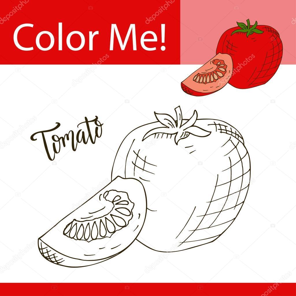 Ungewöhnlich Druckbare Tomate Malseite Zeitgenössisch - Druckbare ...