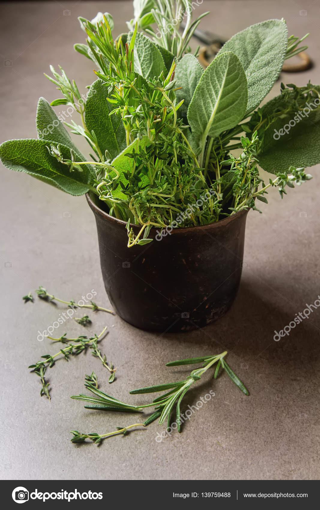 Italian Herb Garden Kit Designs