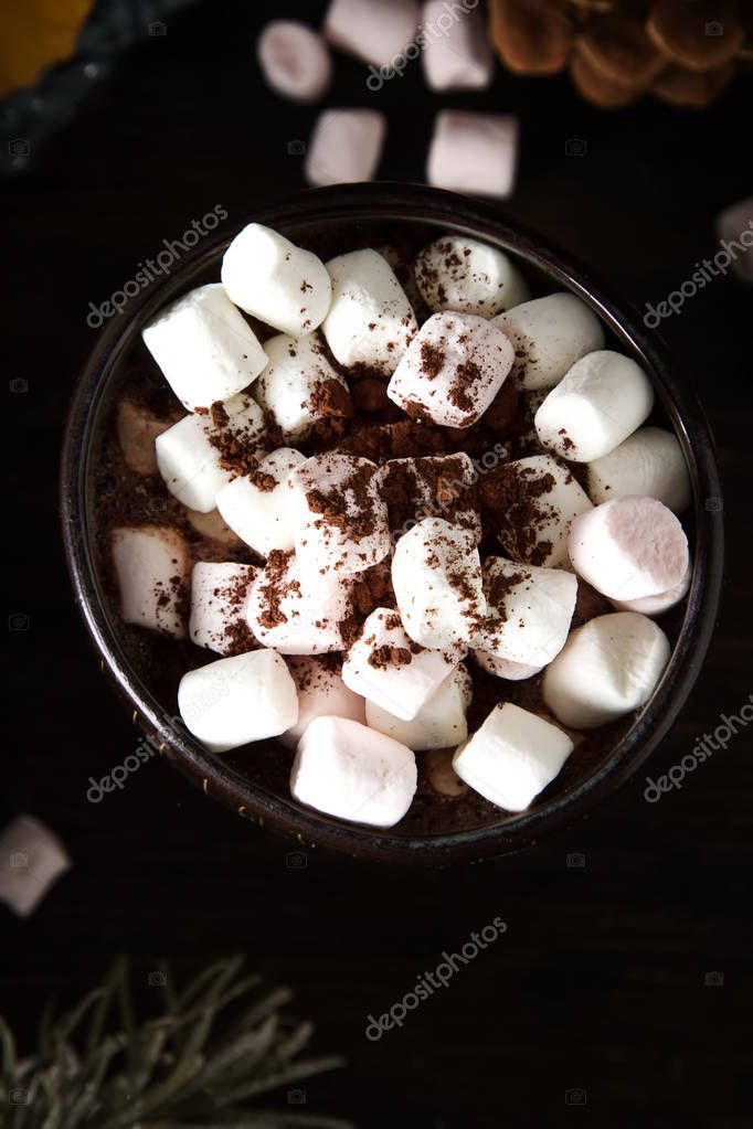 A cup of hot chocolate with gingerbread. The taste of winter. Da