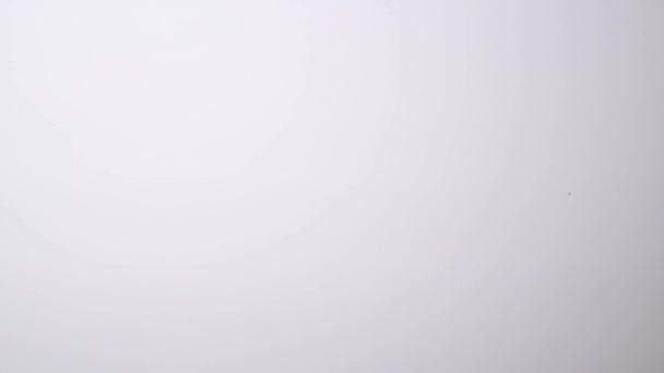 Video invertito della mano asciugandosi parola obiettivi sulla scheda bianca
