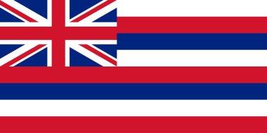 Flag of Hawaii illustration