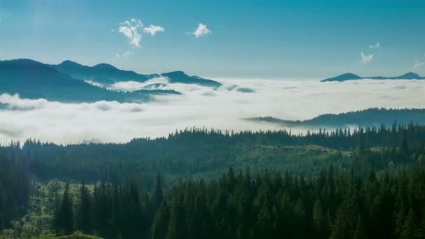 Misty Morning in the Mountains. Fog and Cloud Mountain Valley Landscape. Timelapse.