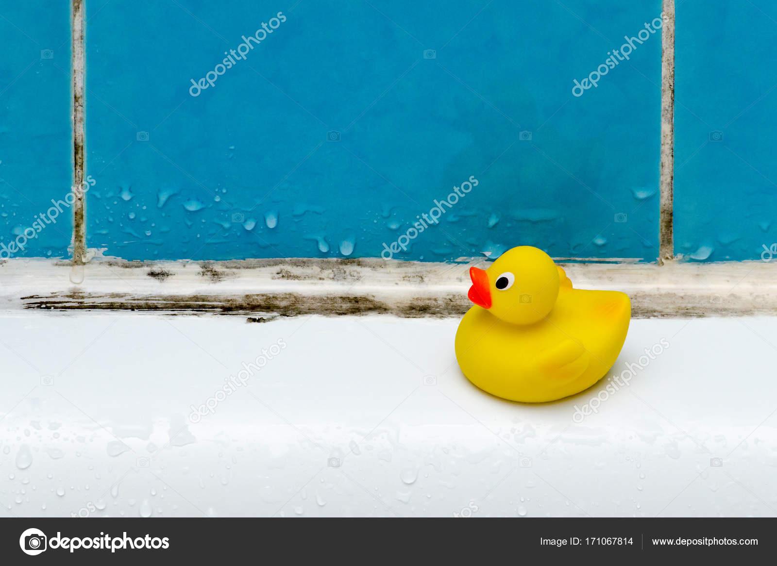 Wunderschön Schimmel Im Bad Dekoration Von Bad, Eine Ente Spielzeug, Closeup — Foto