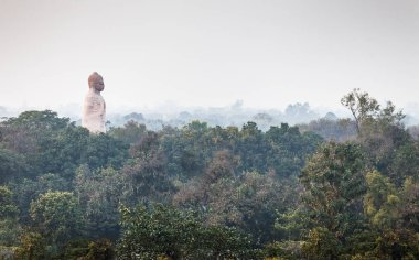 The lord Buddha dominates over the city of Sarnath