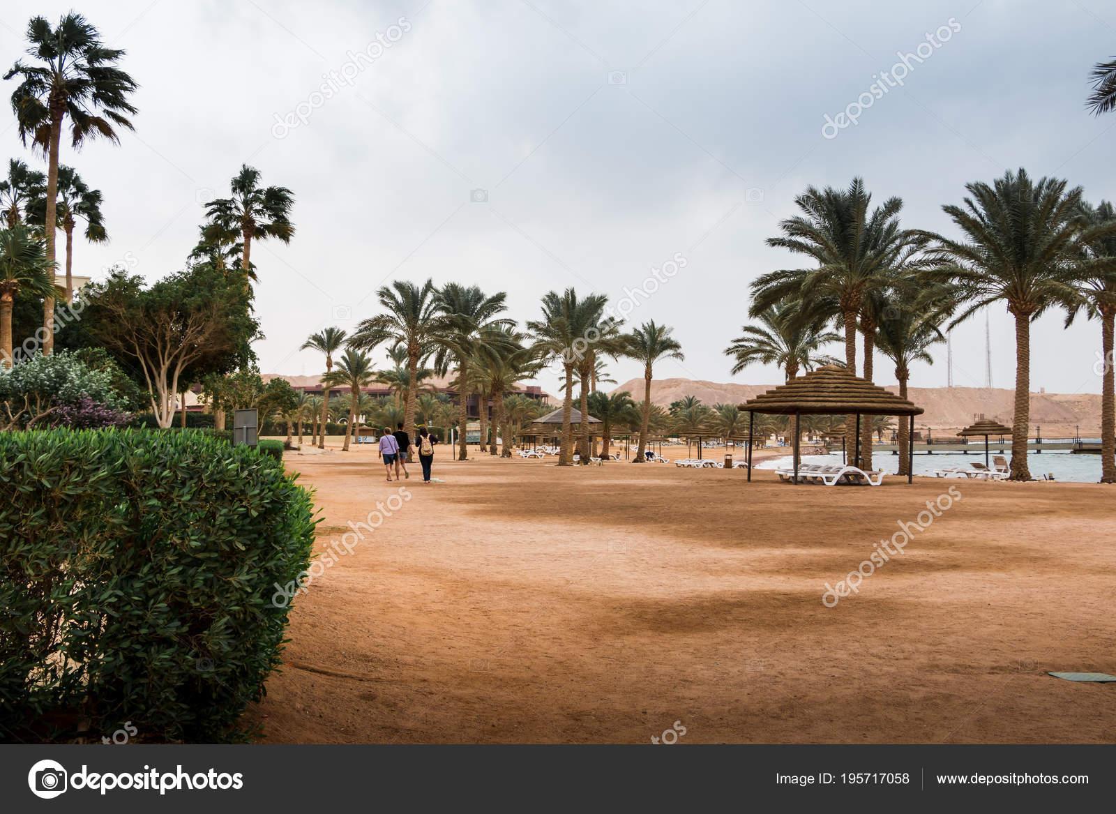 bech com palmeiras e guarda chuvas em um dia nublado e ventoso