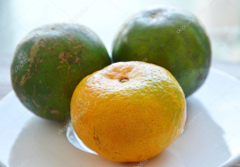 tangerine ripen and unripe on dish