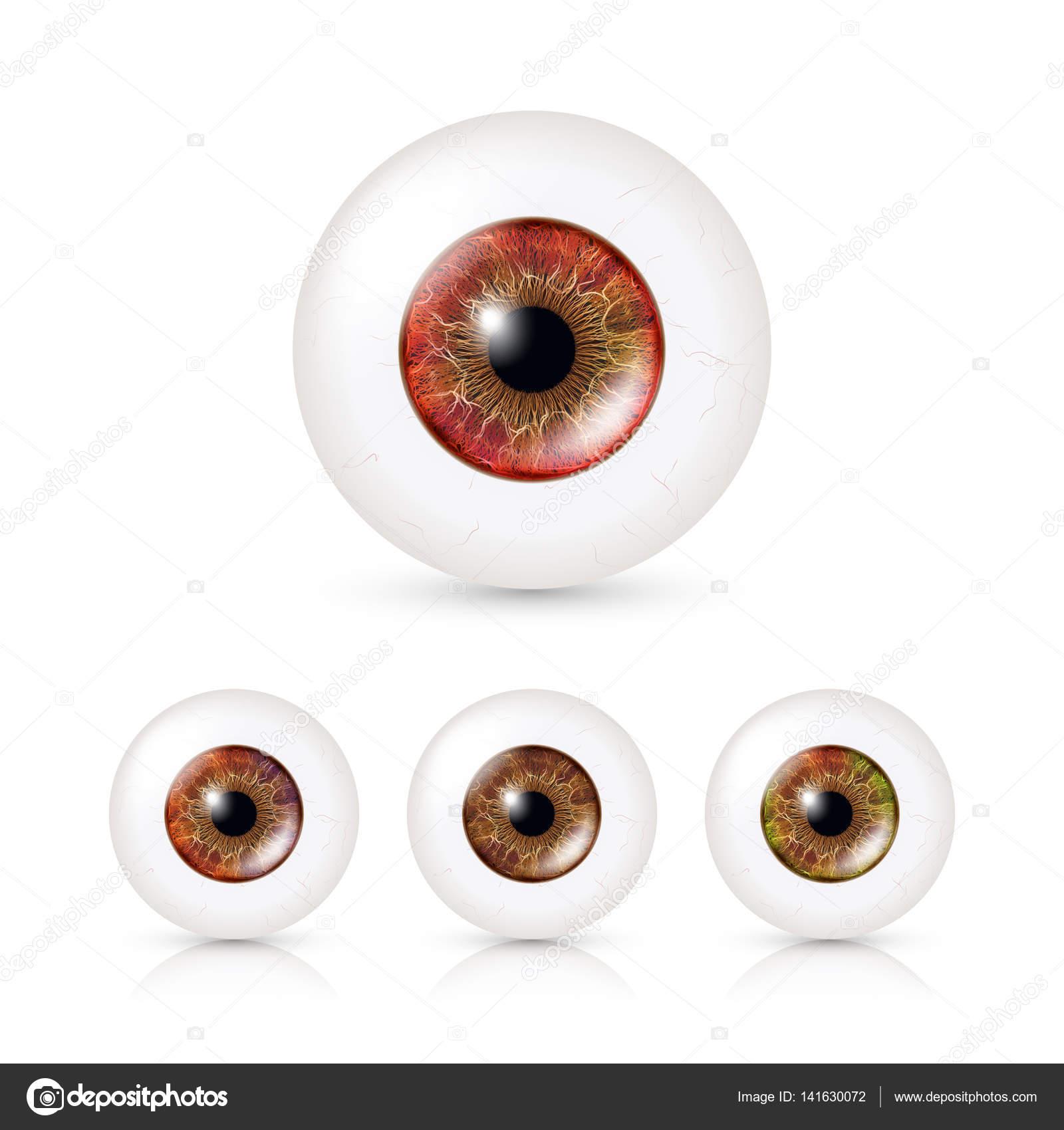 Menschliche Augen mit großen Iris In Farbe gesetzt. Vektor ...