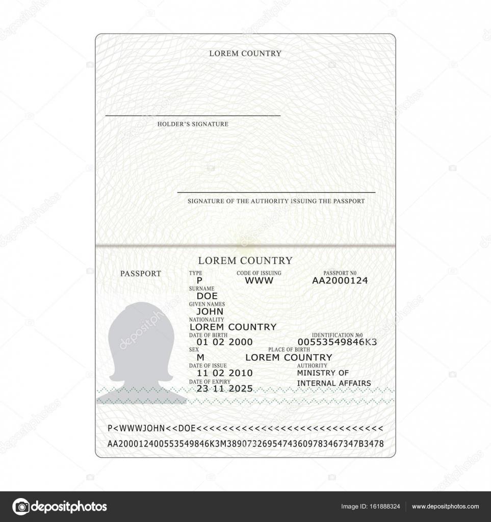 Vector de pasaporte. Plantilla de página en blanco del pasaporte ...