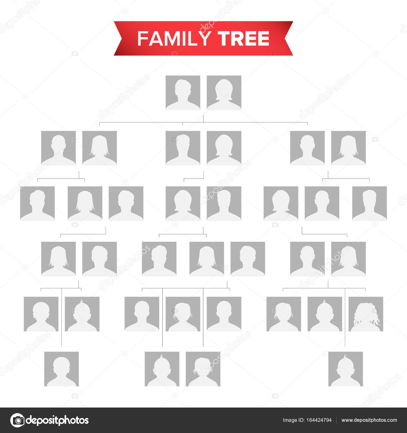 Árbol genealógico Vector en blanco. Historia familiar de árbol con ...