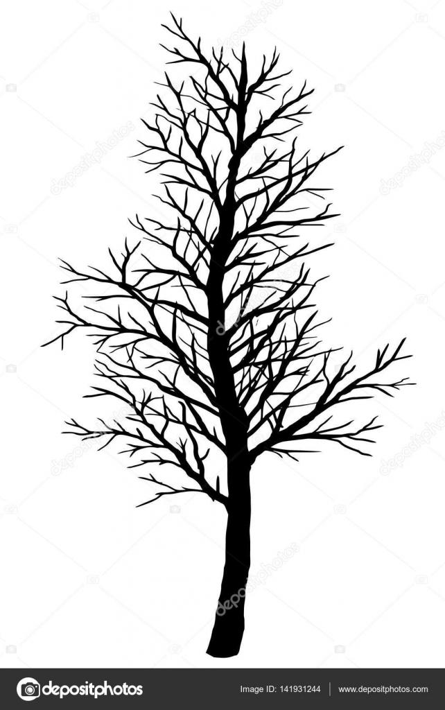Silhouette der Kahler Baum auf einem weißen Hintergrund ...