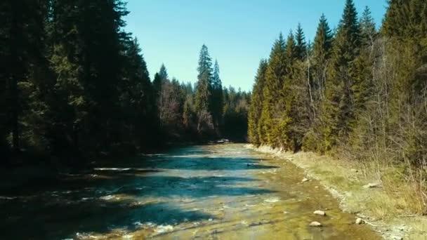 Hegyi fenyő folyó repülés drón folyó felett szárnyal a hegyi víz felett