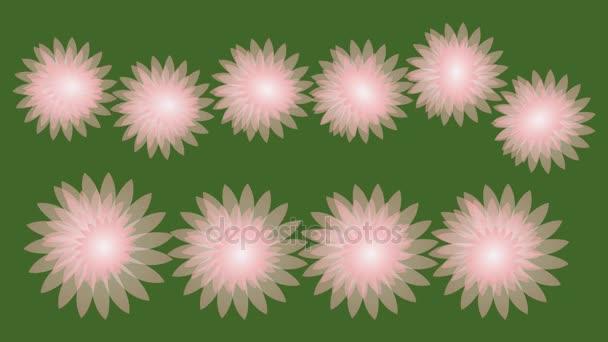 Sping eladó animált banner, szép rózsaszín virágokkal, zöld háttér