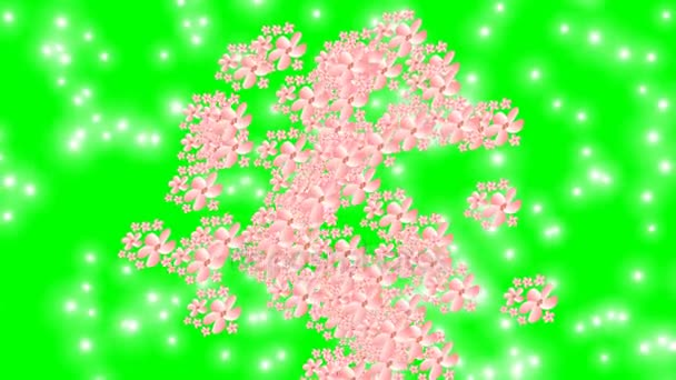 Spring animation, pink flowers and little white lights on green screen
