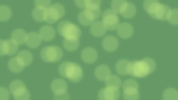 Jarní zelené pozadí videa s efektem bokeh. Prázdné pozadí