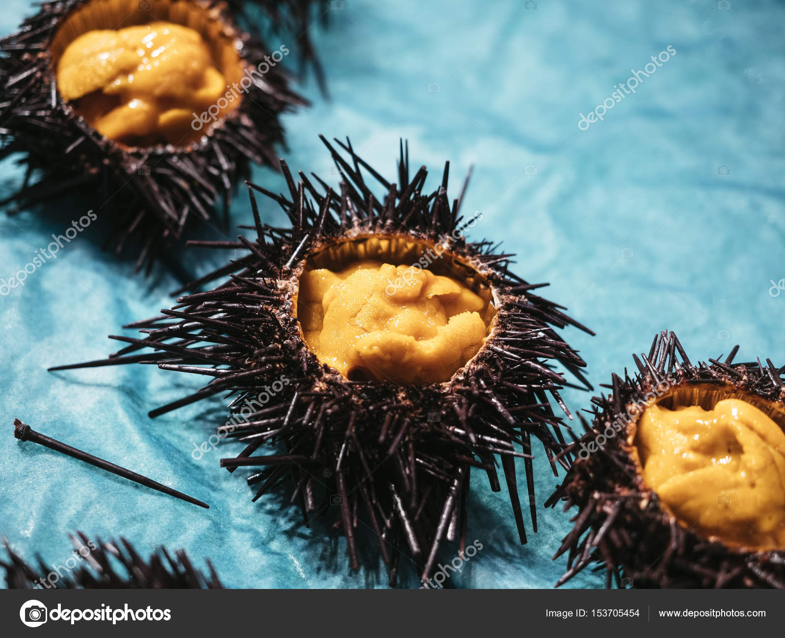 Sea Urchin Japanese Fresh Raw Food Stock Photo C Viteethumb