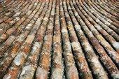 Staré břidlici ze střechy