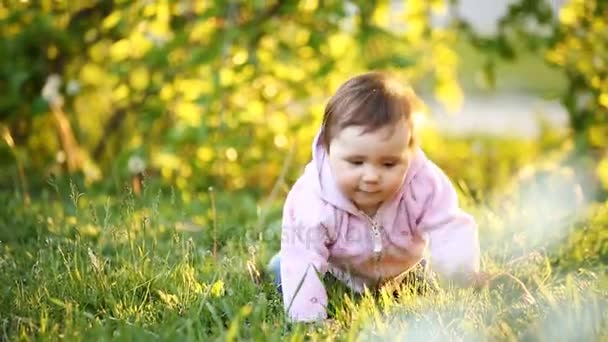 Happy baby-girl crawling on green grass in the park at sunset.