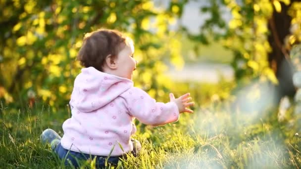 Rear view of the cute baby-girl sitting on the green grass in the park ar sunset.