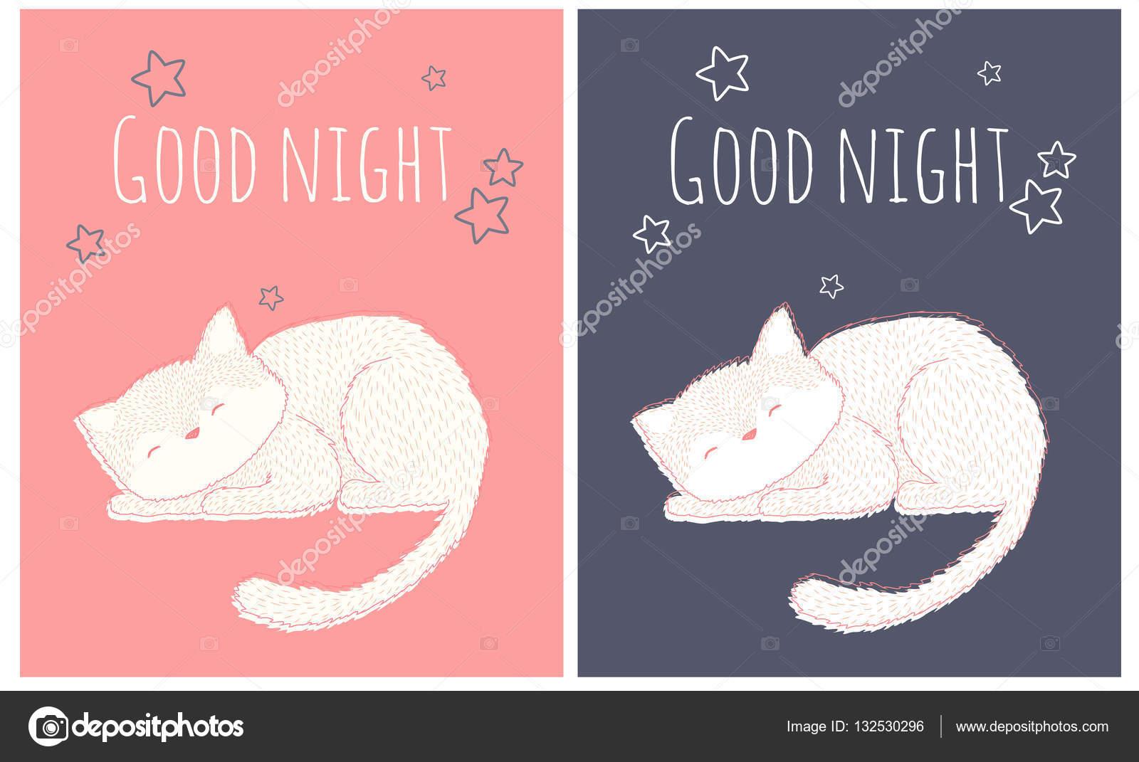Disegni Gatti Che Dormono Gatto Che Dorme E Che