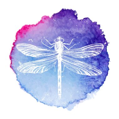 Hand drawn dragonfly on bright watercolor background clip art vector