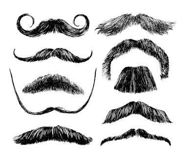 Hand drawn mustache set