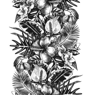 hand drawn tropical border